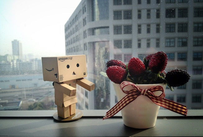 robotandberry